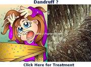 Dandruff Treatment in Pondicherry