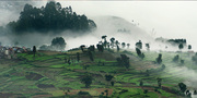 PONDICHERRY TO KODAIKANAL TOUR 2 NIGHTS 3 DAYS